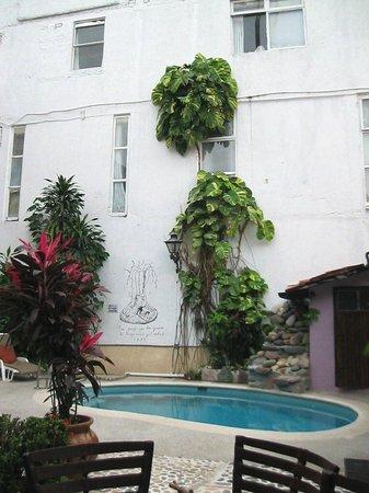 Hotel Yazmin: plants and vines by pool