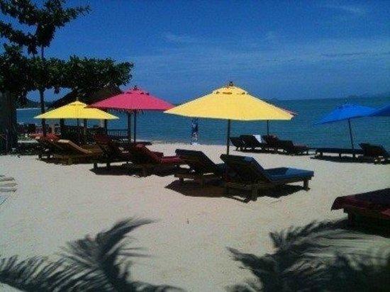 Hacienda Beach Resort: la superbe plage de l hacienda