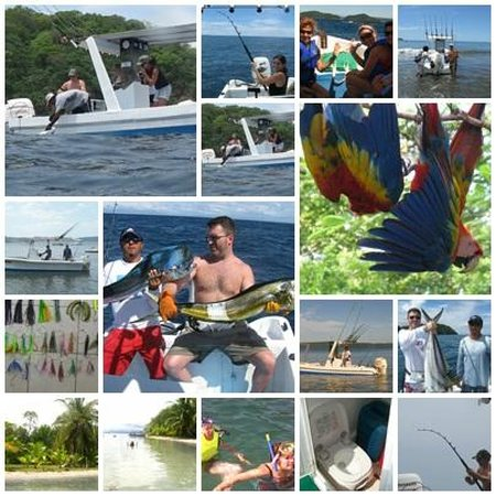 Sea Life Papagayo Tours: In the Gulf of Papagayo