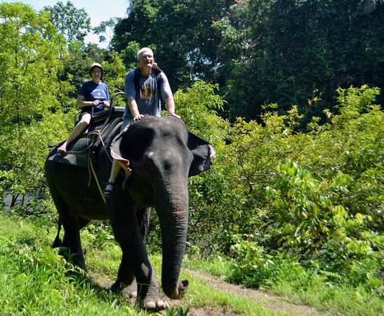 Medan, Indonesien: Elephant Riding