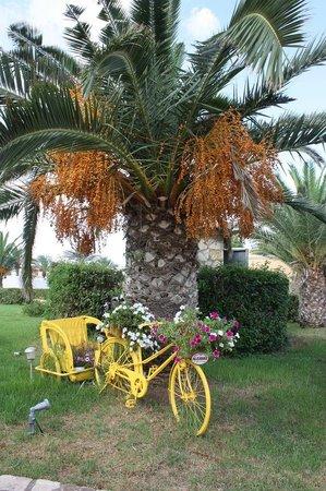 Aldemar Olympian Village: Прокат велосипедов