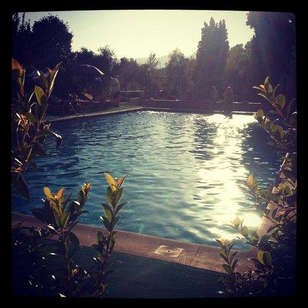 Alcadima Hotel : The pool