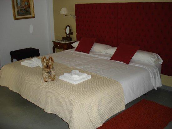 Hotel Balneario de Zújar- La Alcanacia : chambre