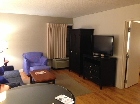 DoubleTree by Hilton Hotel Buffalo - Amherst: living room