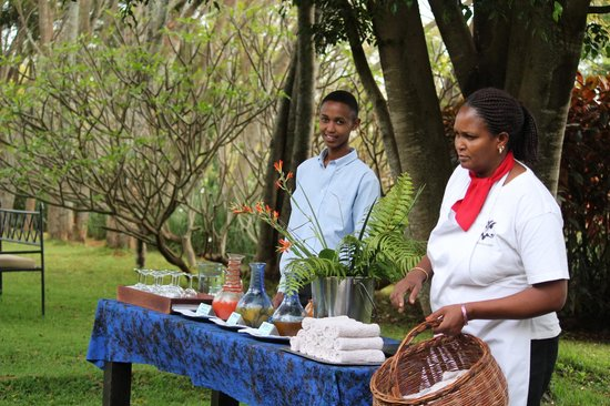 The Plantation Lodge & Safaris: A refreshing welcome