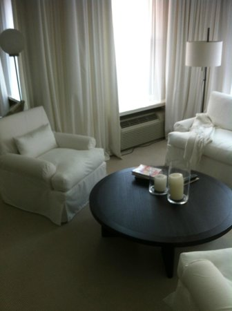 Ambador Chicago Sitting Area With Pull Out Sleeper Sofa