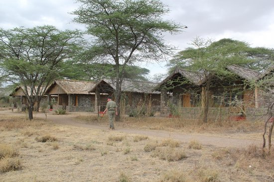 Ndutu Safari Lodge : Small individual cabins