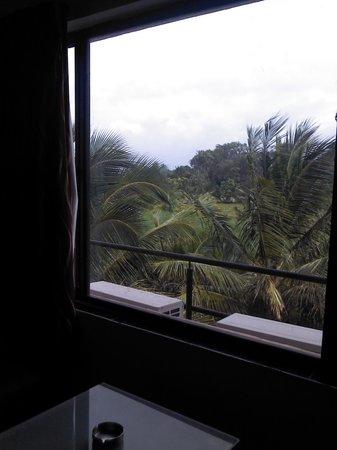 Hotel Hampi International: view from my room