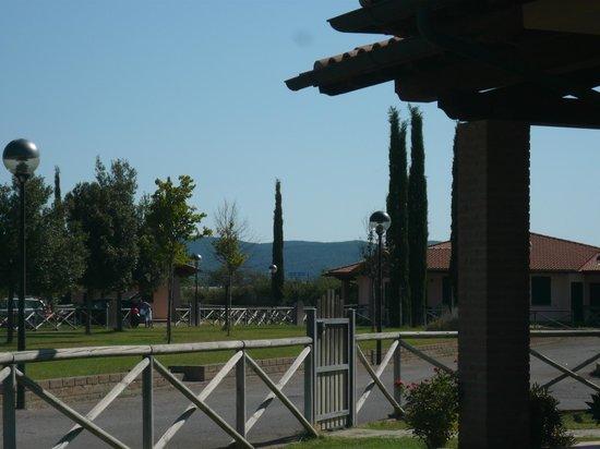 Casa in Maremma: vista dal mio giardino 2
