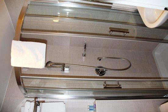Hotel Jadran Zagreb: Bathroom