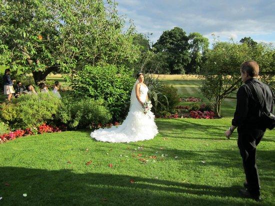 Grovefield House: Garden