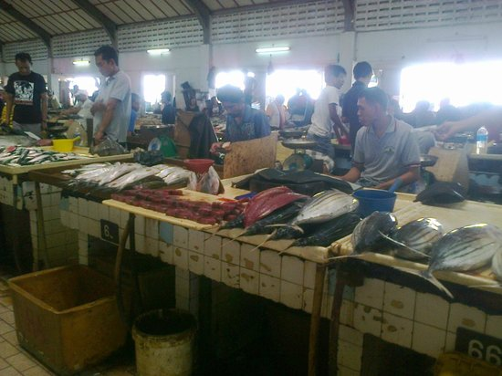 Types of fish local fish market picture of shervinton for Local fish market