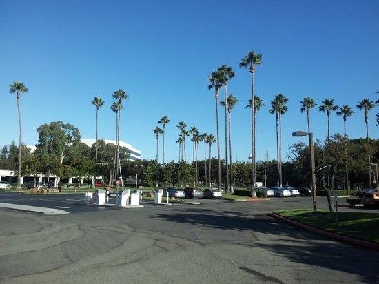 Santa Clara Marriott: Hotel drive