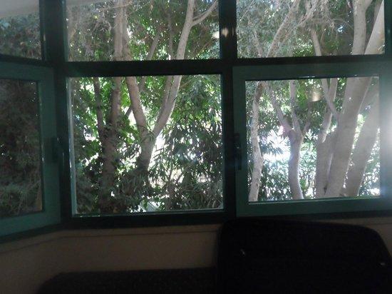 Club Atrium Apartments: room view