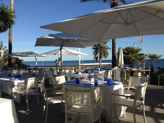 Sea grill picture of puente romano beach resort spa - Sea grill marbella ...