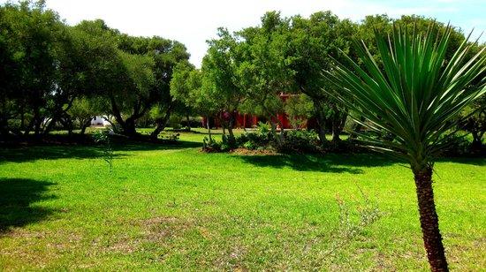 Domaine de l'Arganeraie: Gartenanlage