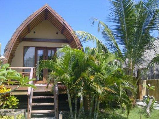 Coconut Dream Bungalows: Coconut Dream