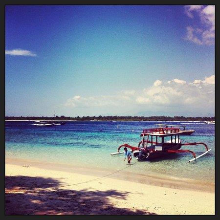 La Cocoteraie Ecolodge: Paradisiac island