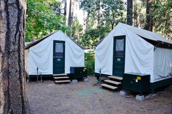 Half Dome Village Canvas Cabins - Curry Village & Canvas Cabins - Curry Village - Picture of Half Dome Village ...