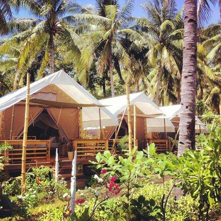 la cocoteraie ecolodge luxury tents 53 6 5 updated. Black Bedroom Furniture Sets. Home Design Ideas