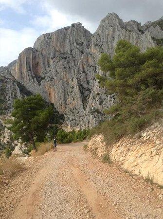 Villa Perka: strolling to a private beach