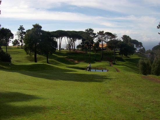 Palheiro Golf : Ein toller Platz
