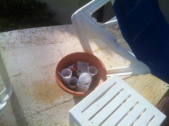 Grand Bahia Principe Cayacoa: Rubbish not emptied