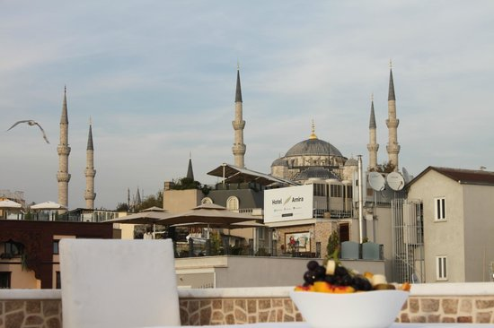 City Guesthouse Istanbul: the blue mosque from terrace
