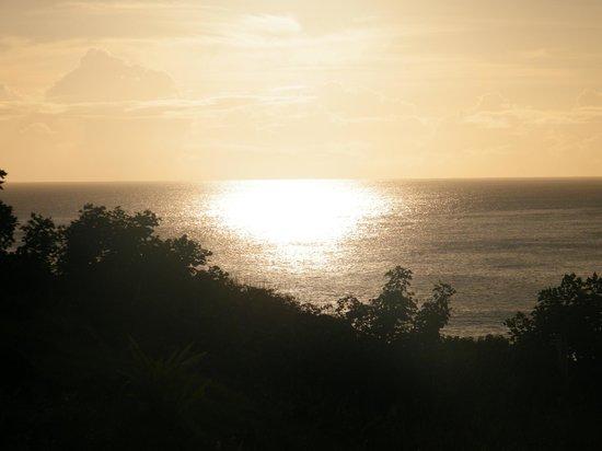 Cabanas Manatea : vista desde patio