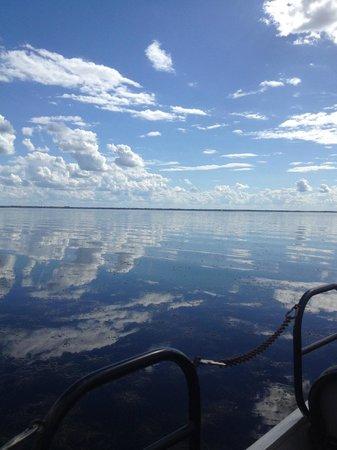 Boggy Creek Airboat Rides: boggy creek