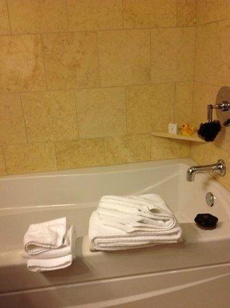 The Paramount Hotel: Bathtub
