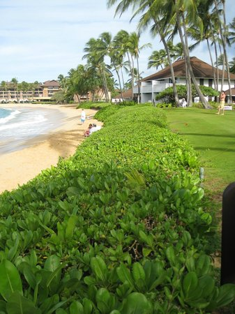 Kiahuna Plantation Resort: Beach front