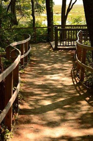 Rachel Carson National Wildlife Refuge : great walking paths