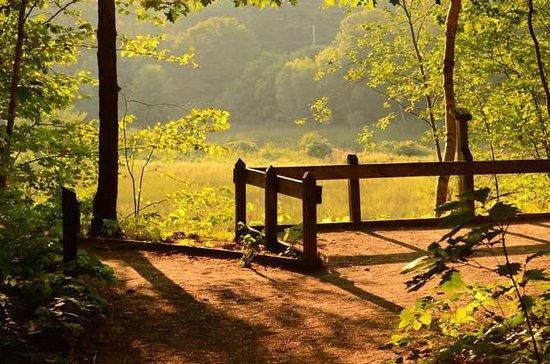 Rachel Carson National Wildlife Refuge: end of the day light