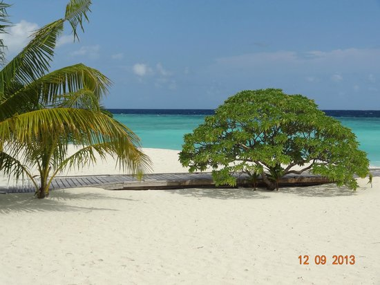 Filitheyo Island Resort: Strand Sunsetbar