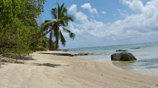 Le domaine de Bacova: Strand, wenn man Richtung Süden läuft