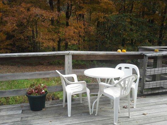 Golden Lion Riverside Inn: Enjoy fall foliage from the back deck.