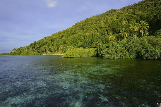Raja Ampat Dive Lodge: Crystal cear waters on Mansuar Island