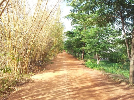 Jetwing Vil Uyana: gravel roads