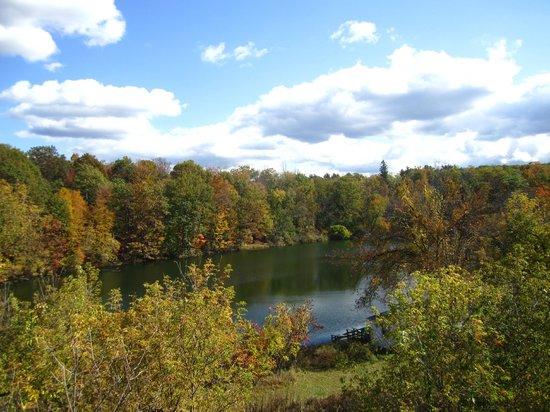 Ananda Ashram- Yoga Society of New York : Autumn View of Lake