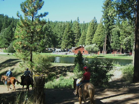 Greenhorn Creek Guest Ranch: RETURNING TO THE CORRAL