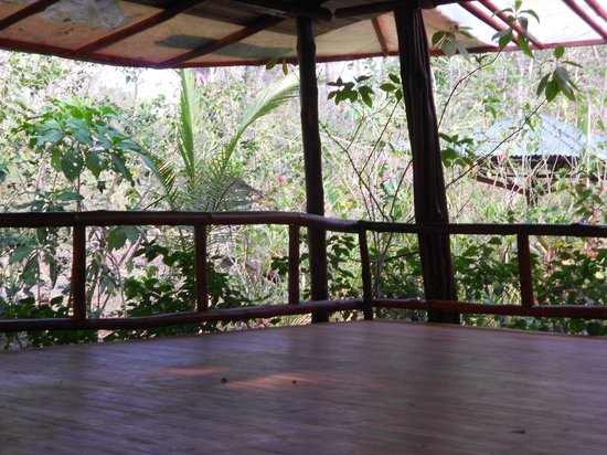 Nosara B&B Retreat : yoga pavilion