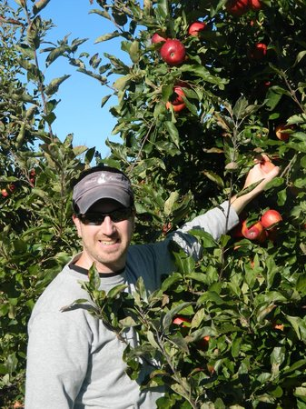 Hyland Orchard & Brewery: Picking