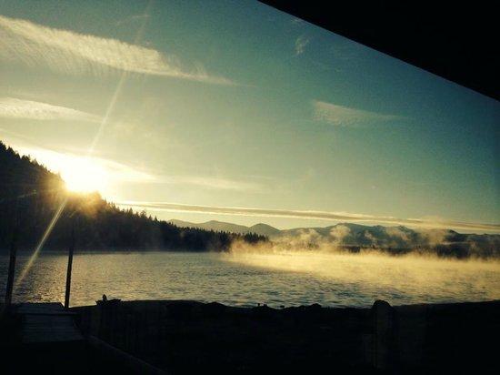 Lemolo Lake Resort : First Morning Sunrise from inside Cabin 11