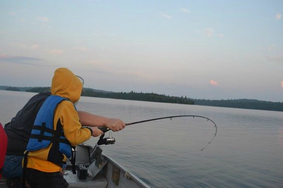 Aaron picture of moose horn lodge chapleau tripadvisor for Hubbard lake mi fishing