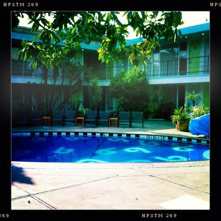 Phoenix Hotel SF : the pool