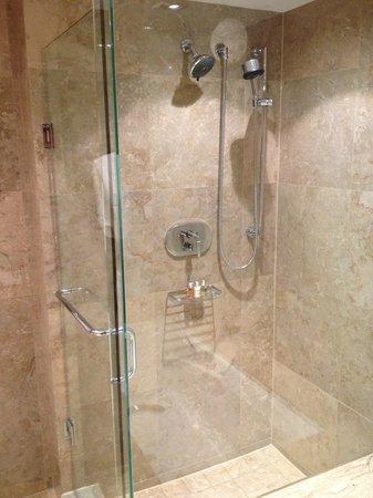 SoHo Metropolitan : Double Shower