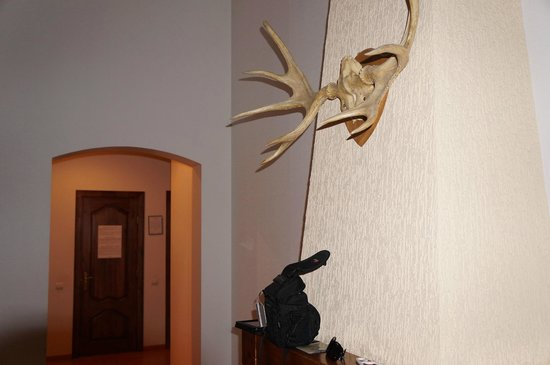Rigaapartment Gertruda: wall decoration