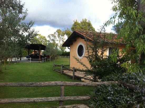 Agriturismo Il Casale: vista del parco