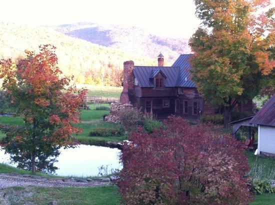 Windekind Farm : Beautiful view